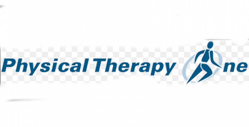 Physical Therapy One Logo
